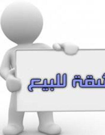 1073_4_بيج_هاوس_القاهرة