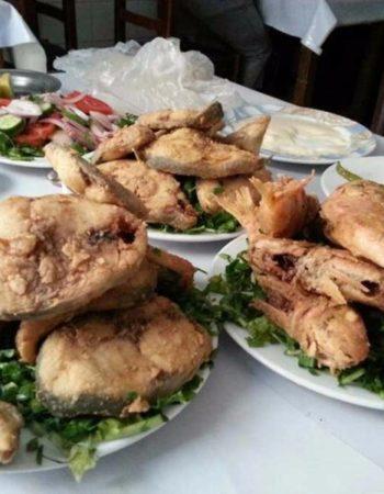 هو ده شعبان بتاع السمك اللي بيقولوا عليه مطعم اسماك فى الاسكندرية 7