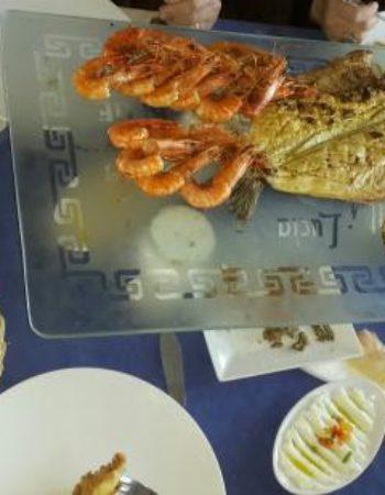 825_greek-club-white-and-blue-restaurant-10