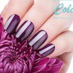 Coloré nails تقليم أظافر فى الاسكندرية 1