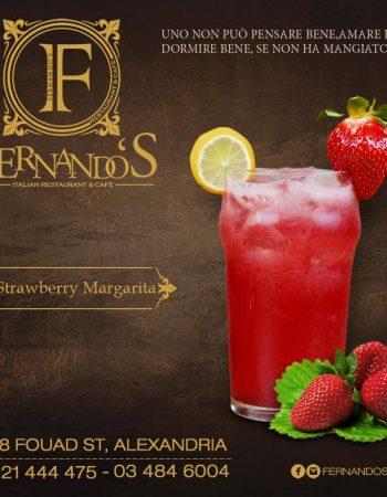 815_fernandos-cafe-in-alexandria-egypt-6