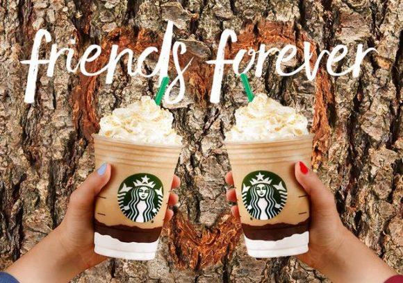 ستار بكس كوفى Star Bucks Coffee سيتى سنتر الإسكندرية الدليل العربي