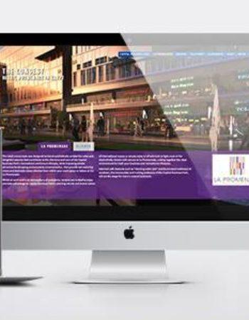 ديزاين كوردينيتورز شركة تصميم مواقع انترنت فى مصر Design Coordinators web design and development in egypt 4