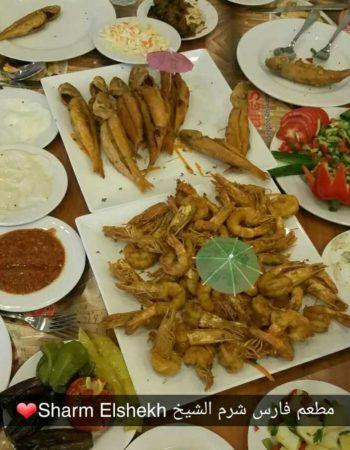فارس مطعم سى فود فى شرم الشيخ Fares restaurant the best seafood in Sharm 13