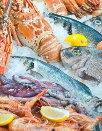 فارس مطعم سى فود فى شرم الشيخ Fares restaurant the best seafood in Sharm 2