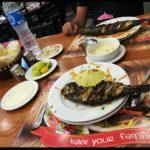 فارس مطعم سى فود فى شرم الشيخ Fares restaurant the best seafood in Sharm 1