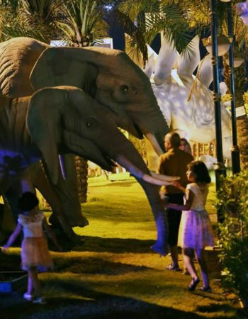 هوليوود شرم hollywood zoo