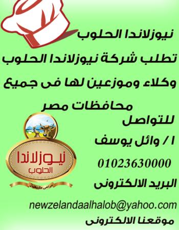 مصر 2