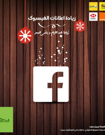 Green Mind, web & social advertising in cairo, Egypt – شركة جرين مايند للإعلان على الويب والسوشيال ميديا فى القاهرة مصر 12