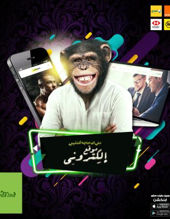 Green Mind, web & social advertising in cairo, Egypt – شركة جرين مايند للإعلان على الويب والسوشيال ميديا فى القاهرة مصر 6